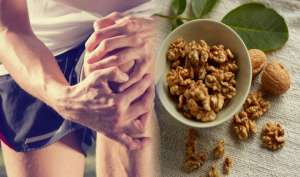 घुटनों के दर्द से है परेशान, तो रोजाना खाली पेट करें अखरोट का सेवन