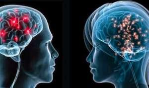 पुरुष के दिमाग में सेक्स और आक्रमकता आपस में होती है जुड़ी जानिए कैसे