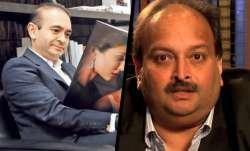 Nirav modi mehul choksi- IndiaTV Paisa