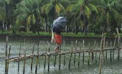 Monsoon likely to hit Kerala in 24-48 hours says Skymet Weather- IndiaTV Paisa