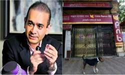 Nirav Modi in London on Singaporean passport say ED sources- IndiaTV Paisa