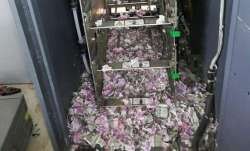 Mice tore notes worth Rs 12 lakhs inside an ATM- IndiaTV Paisa