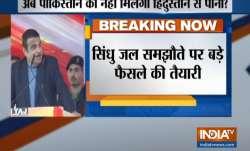 Water Flowing To Pakistan Will Now Be Used To Nurture Yamuna says Nitin Gadkari- India TV Paisa
