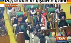 Shiromani Akali Dal protests against Navjot Singh Sidhu remarks on Pulwama attack- India TV Paisa