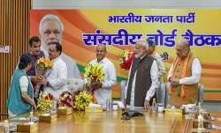 JP Nadda will be working president of BJP- India TV Paisa