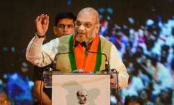 <p>Amit Shah</p>- India TV Paisa