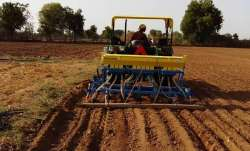 Wheat sowing down 37 pc so far; oilseeds up- India TV Paisa
