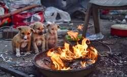 cold, Mercury dips, north India, Kashmir, Himachal- India TV Paisa