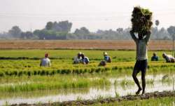 <p>Farm Loan</p>- India TV Paisa