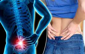 lower back pain- Khabar IndiaTV
