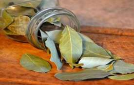 bay leaves- Khabar IndiaTV