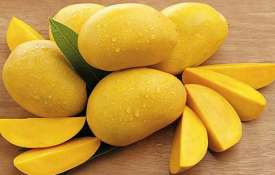 mango - Khabar IndiaTV