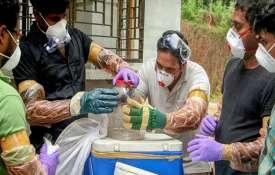 Tests rule out bats as source of Nipah virus in Kerala | PTI- IndiaTV Paisa
