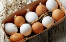 Egg- Khabar IndiaTV