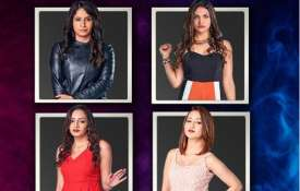 Two jodis have entered Bigg Boss 12 house- India TV