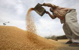 wheat procurement- India TV