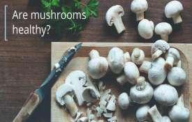 Mushroom- India TV