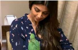 Shilpa Shetty - India TV