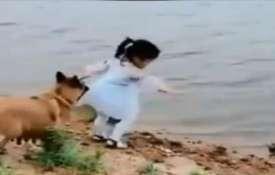 dog- India TV