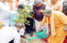 'Vriksharopan Mahakumbh' launched with target to plant 22 cr saplings in UP- India TV