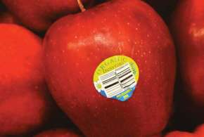 FSSAI ask traders to avoid sticker on fruits- India TV