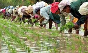 रिजर्व बैंक के पूर्व गवर्नर ने कहा, देश की अर्थव्यवस्था के लिए ठीक नहीं है किसानों की कर्ज माफी