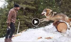 सलमान खान का सबसे खतरनाक वीडियो आया सामने, कुल्हाड़ी लेकर भेड़ियों से भिड़ गए भाईजान