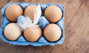 इन सिपंल ट्रिक्स से तुरंत जानें कि अंडा खाने लायक है कि नहीं