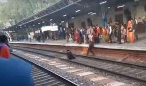 train - India TV