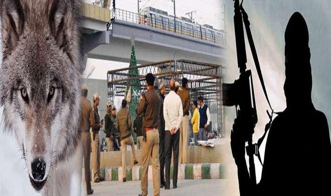 IS स्टाइल में अटैक का प्लान, दिल्ली को दहलाएगा 'लोन वुल्फ' ? - India TV