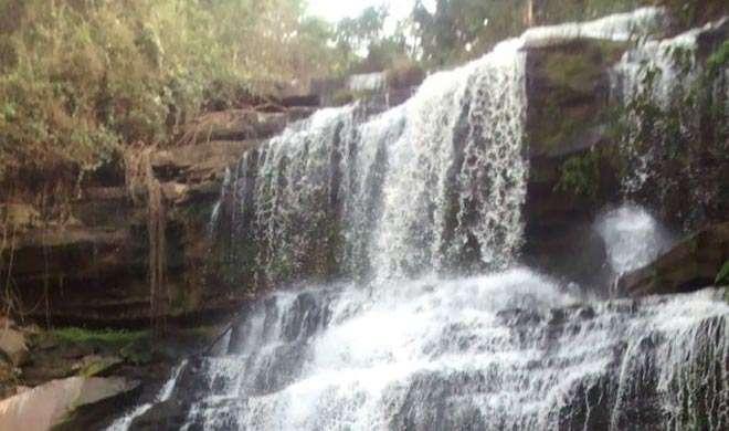 घाना: पेड़ गिरने से लगभग 20 छात्रों का मौत - India TV