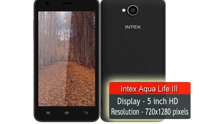 intex (3)