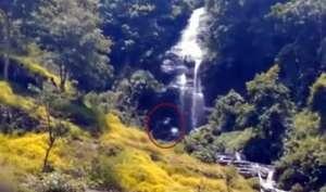 Video: इंडोनेशिया के जंगल में देखा गया 'महादानव', लोग नहीं कर पा रहे यकीन...