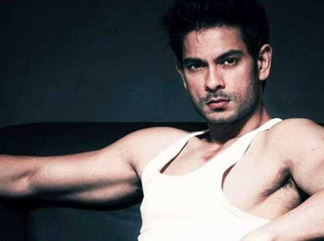 कीथ सेक्वेरा:- वीडियो जॉकी से अभिनेता बने कीथ भी इस बार बिग बॉस के घर में देखें जाएंगे।