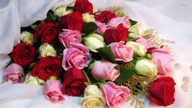 दुनिया की कुछअनदेखे खूबसूरत फूल देखिए