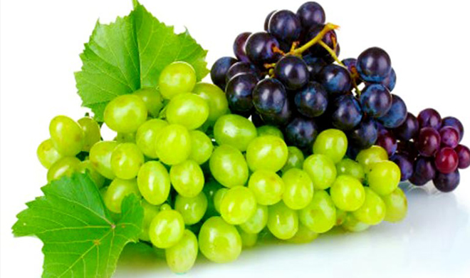 grapes- India TV