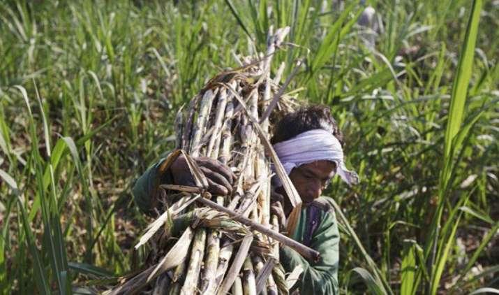 UP में किसानों की कर्जमाफी से बैंकों को हो सकता है 27,420 करोड़ का नुकसान : SBI रिपोर्ट- IndiaTV Paisa