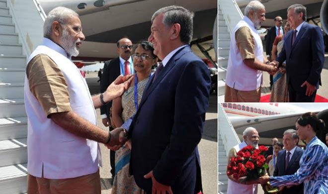 Narendra Modi - India TV