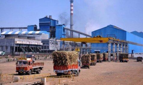 चीनी मिलों ने गन्ना किसानों के 92 फीसदी बकाए का किया भुगतान, 4225 करोड़ रुपए का बकाया शेष- IndiaTV Paisa