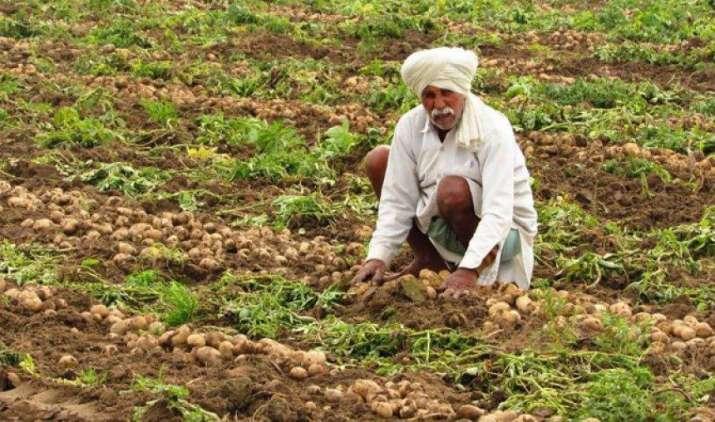 सरकार का 40 प्रतिशत बुआई क्षेत्र को बीमा के दायरे में लाने का लक्ष्य, किसानों को नुकसान से बचाने की कवायद- India TV Paisa