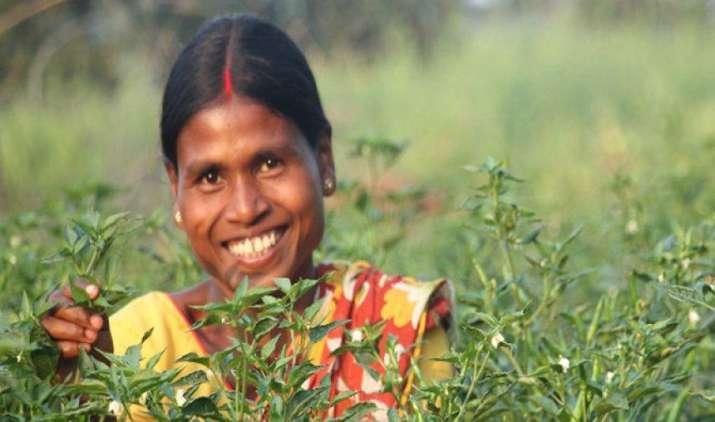 टाटा ट्रस्ट की मदद से चार राज्यों में उभर रहे हैं लखपति किसान, 450 गांवों में पहल- India TV Paisa