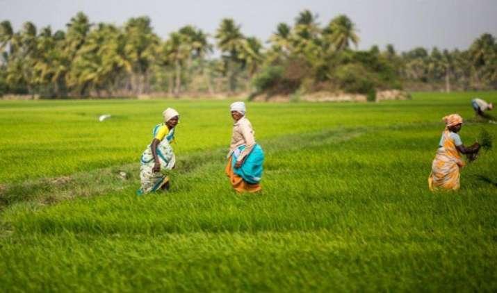 कृषि आय पर टैक्स लगाने की कोई योजना नहीं, जेटली ने कहा- देश में अमीर किसानों की संख्या ना के बराबर- IndiaTV Paisa