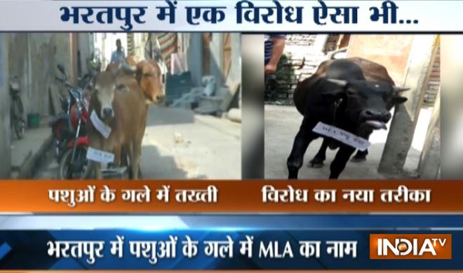 Bharatpur- Khabar IndiaTV