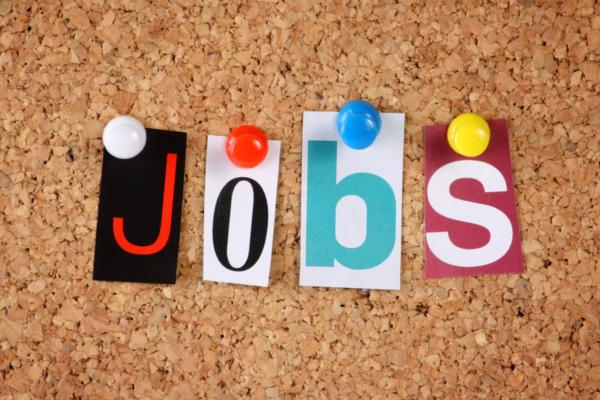 Employment Data- India TV Paisa