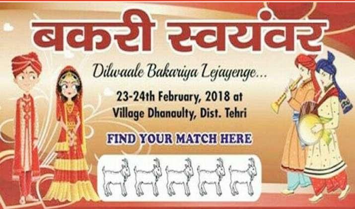 Uttarakhand-ministers-clash-on-Bakri-Swayamvar- India TV