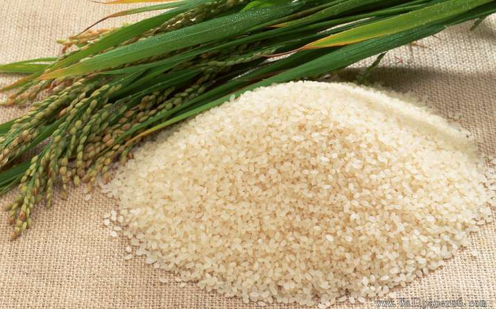 10 million tons rice- IndiaTV Paisa