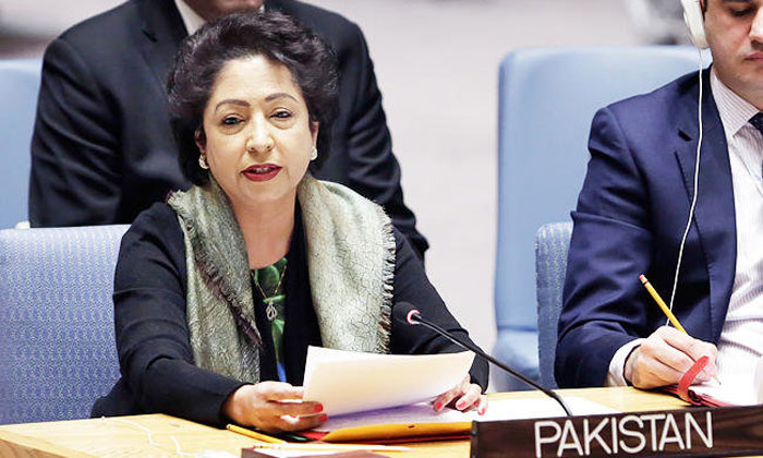 Pakistan criticises India and other G4 nations on UNSC reform | AP- India TV