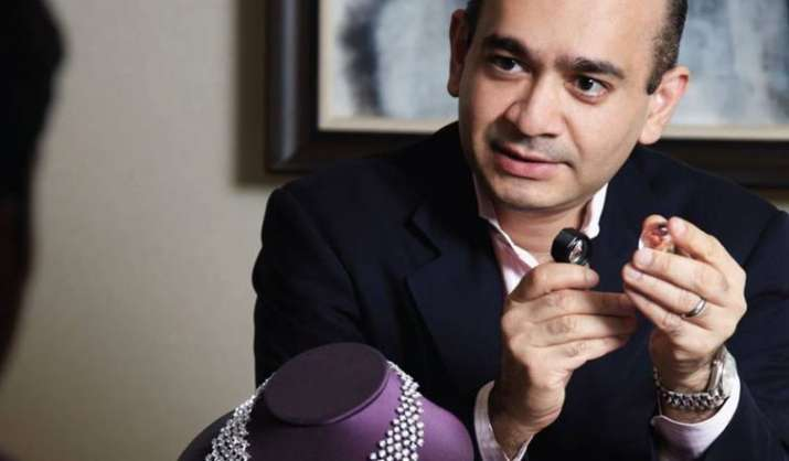 Insolvency proceedings of Nirav Modi company - India TV Paisa