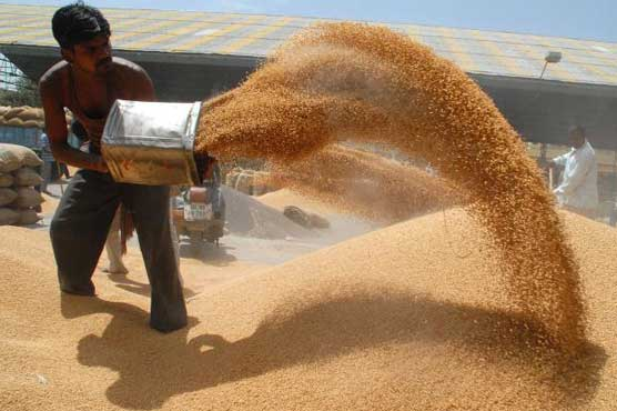 Wheat procurement for Rabi Marketing Season 2018-19- IndiaTV Paisa