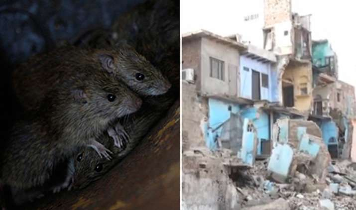 Rats bring down three-storey building in Agra- Khabar IndiaTV